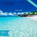 2021年 壁掛けカレンダー A3 カギスマミヤコジマ 沖縄...