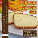 ショッピングケーキ バナナケーキ【220g】【5箱セット】【送料無料】 子どもから大人まで大人気 スイーツ グルメ パウンドケーキ 沖縄特産品 お土産 贈り物 プチギフト 挨拶回りにも♪
