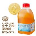 業務用 カナ� 産蜂蜜 はちみつ 2kg純粋蜂蜜