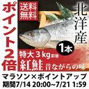 【送料無料】北洋産天然紅鮭3kg前後 特大で脂のり良し!天然の焼き用紅鮭甘塩