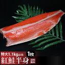 【送料無料】天然紅鮭半身1.1kg前後 特大で脂のり良し!天然の焼き用紅鮭甘塩