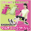 【送料無料】アルインコ EXG042GP マルチコンパクトジム【シットアップベンチ】【エクササイズ】【ダイエット/健康】【健康器具】【肉体改造】