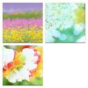 【アートデリ】花の写真のファブリックボードセット インテリア 雑貨 アート mur-0003_mur