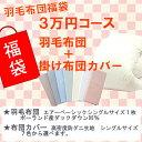 新春福袋!3万円コース 羽毛布団+布団カバー ポーランド産ホ...