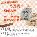 新春福袋!5万円コース 羽毛布団+布団カバー ポーランド産ホ...