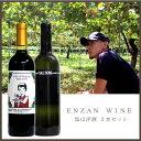 送料無料[ 塩山洋酒 2本セット ]塩山洋酒醸造 ENZAN WINERY[ ワインセット 甲州 国産 ワイン]