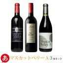 送料無料[ マスカットベリーA 3本セット ] 赤ワイン セット 甲州ワイン 国産 日本ワイン[mba]