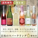 国産ワイン スパークリングセット 山梨の極旨スパークリングの3本セット!!