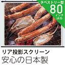 プロジェクタースクリーンリア投影80インチ (4:3)日本製