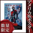 ショッピングポール 【映画ポスター】アントマン グッズ (ポール・ラッド) /DS