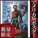 ショッピングポール 【映画ポスター】アントマン グッズ (ポール・ラッド) /Cinemas Soon DS