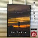 【映画ポスター】 ジョーブラックをよろしく ブラッド・ピット /インテリア アート おしゃれ 約68×101cm フレーム別 /ADV-両面 オリジナルポスター