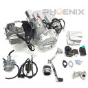 65 ATV 四輪バギー LIFAN製 125cc エンジン AT ノークラッチ バック付き セル 新着新品