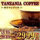 「キリマンジャロ 1500g」(約150杯分)特別価格2999円★送料無料500g×3袋で発送【コーヒー豆】