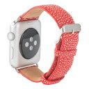 Revetta еиед│╫ емеыб╝е╖еу е╣е╞егеєе░еьед Apple Watch е╨еєе╔ е┘еые╚ еье├е╔ └╓ 42mm [091-5stab42]