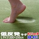 \期間限定で使える20%OFFクーポン発行中/ラグ 低反発ラグ 極厚25mm 200×250cm ラグ 厚手 滑り止め 低反発マット マット カーペット 長方形 四角 絨毯 リビング マイクロファイバー