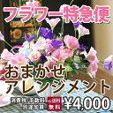 フラワー特急便【当日配達】フラワーアレンジメント 10P03Sep16