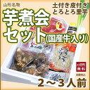 山形 芋煮 セット 【 芋煮会 セット 2〜3人前 】 里芋...