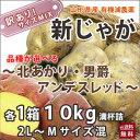 じゃがいも 10kg 送料無料 ジャガイモ きたあかり アンデスレッド 男爵芋 (北あかり・アンデスレッド・男爵)から選べる 2L〜MサイズMIX 10kg  山形県産