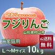 りんご フジりんご サンふじ 訳あり 送料無料 山形 リンゴ 蜜入りリンゴ 【 ふじりんご サンふじ 10kg L〜Mサイズ ご家庭用 工藤農園 (若干のキズ、色むらあり) 有機減農薬栽培 】 fuji りんご 値段 産地 詰め合わせ 時期 5kg 3kg 訳あり 贈答 贈答用 葉取らずりんご