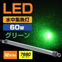 LED ╜╕╡√┼Ї ┐х├ц╜╕╡√┼Ї 60w ╬╨ 12v едел─рдъ SMDб▀384╚п 7680еыб╝есеє ╠ы─рдъ ещеде╚ ╛╚╠└ е╖еще╣еже╩ео еве╕еєе░ е╩еде╚е┐едеще╨д╦дт е╨е├е╞еъб╝┼└┼Їдт▓─