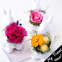 ●バニー・ブーケ【クリアBox入】ギフト 母の日 うさぎの花...