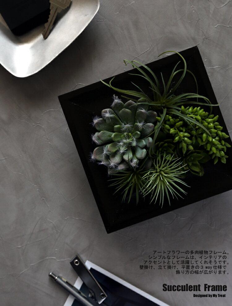 ●サキュレント フレーム【アート】多肉植物の壁...の紹介画像3