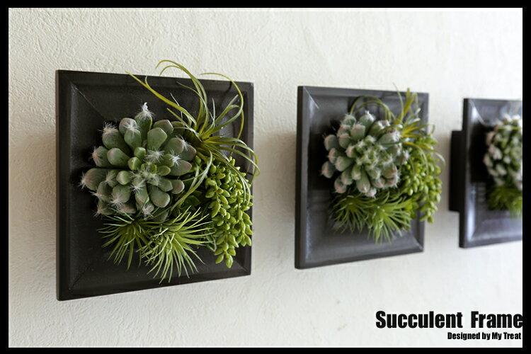●サキュレント フレーム【アート】多肉植物の壁...の紹介画像2