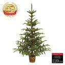 クリスマスツリー ホプシーツリー120cm【高級ポットツリー...