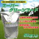 芝生用微生物発酵濃縮&活性有機肥料 スーパーグリーンフード 5kg入り 粉タイプ/あす楽対応/