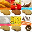 送料10円!パティシエ自慢の限定フレーバー豆乳おからクッキーコレクションをお試しください。豆乳おからクッキー・コレクション【1ヶ月お試し販売】