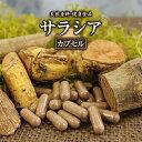 【送料無料】 サラシアカプセル(220粒)天然ピュア原料その...