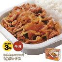 レトルト非常食 レスキューフーズ1食ボックス『牛丼』(非常食...