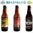 ★地ビール 飲み比べセット5★ブルーマスタークラフトビール飲みくらべギフト 3種・6本 セット