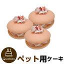 誕生日ケーキ バースデーケーキ ワンちゃん用 犬用 ワンちゃん用 ウーピーパイ いちご味 3個セット ペットケーキ