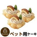 誕生日ケーキ クリスマスケーキ 犬用 ワンちゃん用 プチタル...