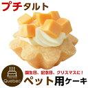 誕生日ケーキ クリスマスケーキ ワンちゃん用 犬用 ワンちゃん用 プチタルト チーズのタルトケーキ ペットケーキ