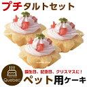 新入荷 誕生日ケーキ クリスマスケーキ ワンちゃん用 犬用 ワンちゃん用 プチタルトセット(苺のタルト) 3個 ペットケーキ
