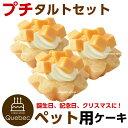 誕生日ケーキ ワンちゃん用 犬用 ワンちゃん用 プチタルトセット(チーズのタルト) 3個 ペットケーキ