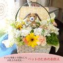 ペットのためのお供え 花 フラワーアレンジメント ペット専用 犬 ネコ ウサギ