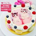 ペットの写真ケーキ≪2〜3名用≫4号サイズ直径12cmから≪23〜30名用≫10号サイズ直径30cmまでご用意ケーキは絶品マカロンでかわいくデコレーション生クリーム・イチゴクリーム・チョコクリーム
