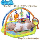 Oball_gym_main1