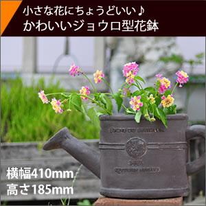 ボヌールオリーブ植木鉢