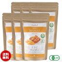 有機JASオーガニック ドライマンゴーマハチャノック種 50g 6袋 無添加 砂糖不使用 タイ産JAS Certified Organic Dried Mango Maha Chanok メール便送料無料