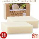 有機ココナッツ石鹸 80g 2個 コールドプロセス製法 オーガニックソープ ココナッツオイル石けん 無添加生せっけん 送料無料