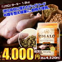 【RIGALO(リガロ)】ターキー 全年齢用ドッグフード【グレインフリー】【1.8kg】