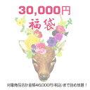 ☆数量限定☆【福袋チケット3万円】税込46,000円までの対...