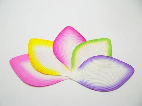 No.7320 高級散華 五色のハスの花弁 200枚1箱