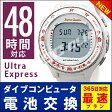【Ultra Express 48時間対応】ダイブコンピュータ電池交換+返送料無料※のセット価格!全日平日扱い!