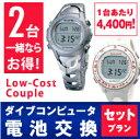 【Low-Cost Couple 2台合計8,800円】2台以上一緒に申し込み。10営業日対応。ダイ